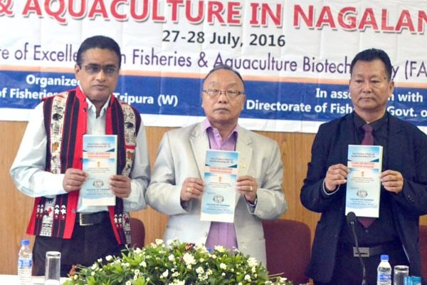 In rough waters but Nagaland's fishery sector swims on