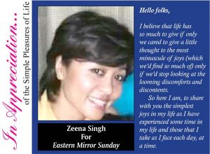 for-zeena-singh-color